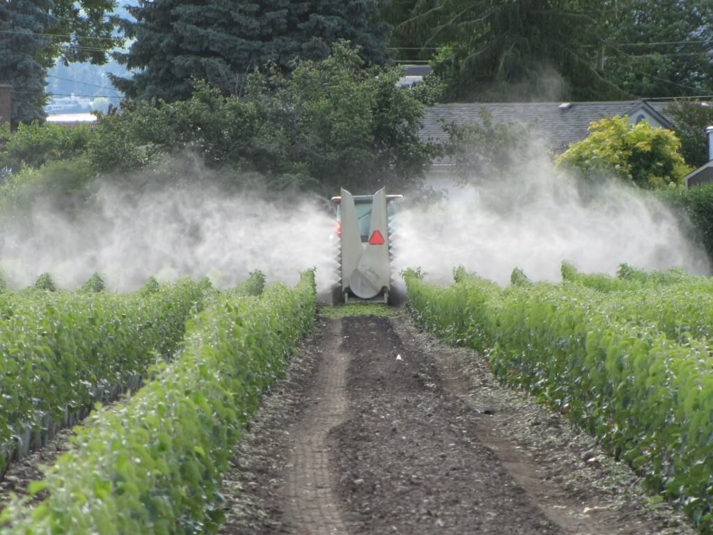 This application may be effective, but it is definitely not efficient. Turn off nozzles that do not need to be on; most of the overspray never lands on the intended target. Photo Credit – M. Lanthier, British Columbia