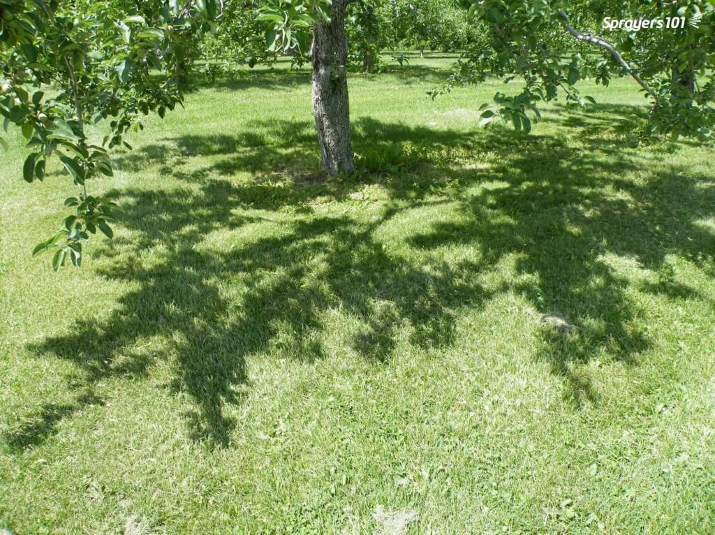 An orchardist taught me this trick: If you want to know if spray will penetrate a canopy, you should be able to see sunlight through the shadow at high noon.