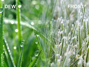 If you see fog, dew or frost, you're already in an inversion. The air has become cold enough to condense or even freeze water.