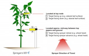 Location and orientation of water-sensitive papers relative to soybean and sprayer direction of travel.