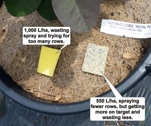Improved coverage in container crops