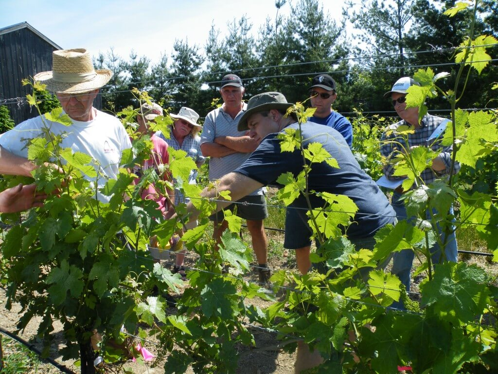 Checking coverage on water-sensitive paper with some of the Grape Growers of Ontario members in 2012