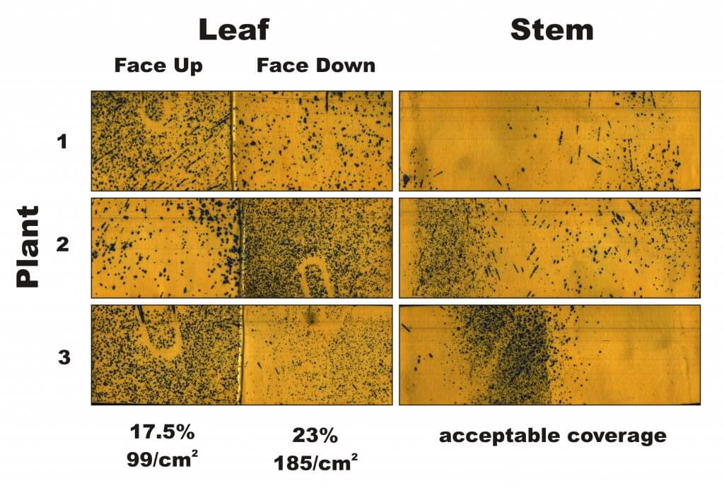 Figure 2 - Water-sensitive papers from three plants sprayed in Condition 2. Percent coverage and droplet density are calculated for the leaves, and a visual inspection is made of the stems.