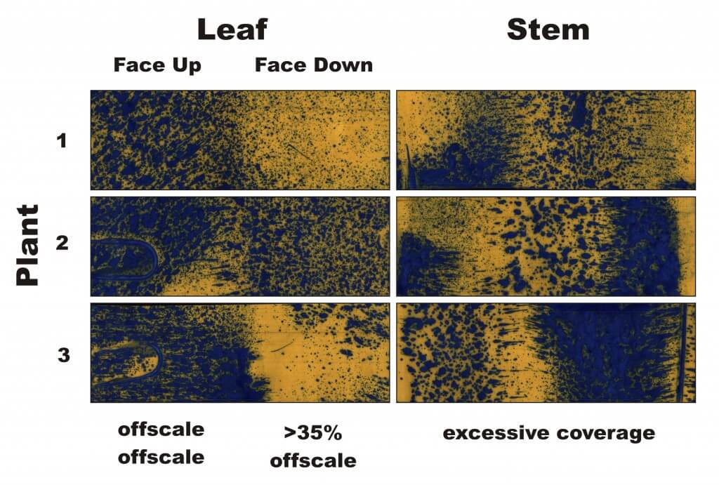 Figure 3 - Water-sensitive papers from three plants sprayed in Condition 3. Percent coverage and droplet density are calculated for the leaves, and a visual inspection is made of the stems.