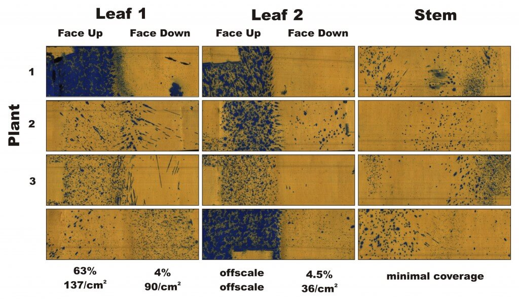 Figure 4 - Water-sensitive papers from three plants sprayed in Condition 3, ~5 weeks later. Percent coverage and droplet density are calculated for the leaves, and a visual inspection is made of the stems.