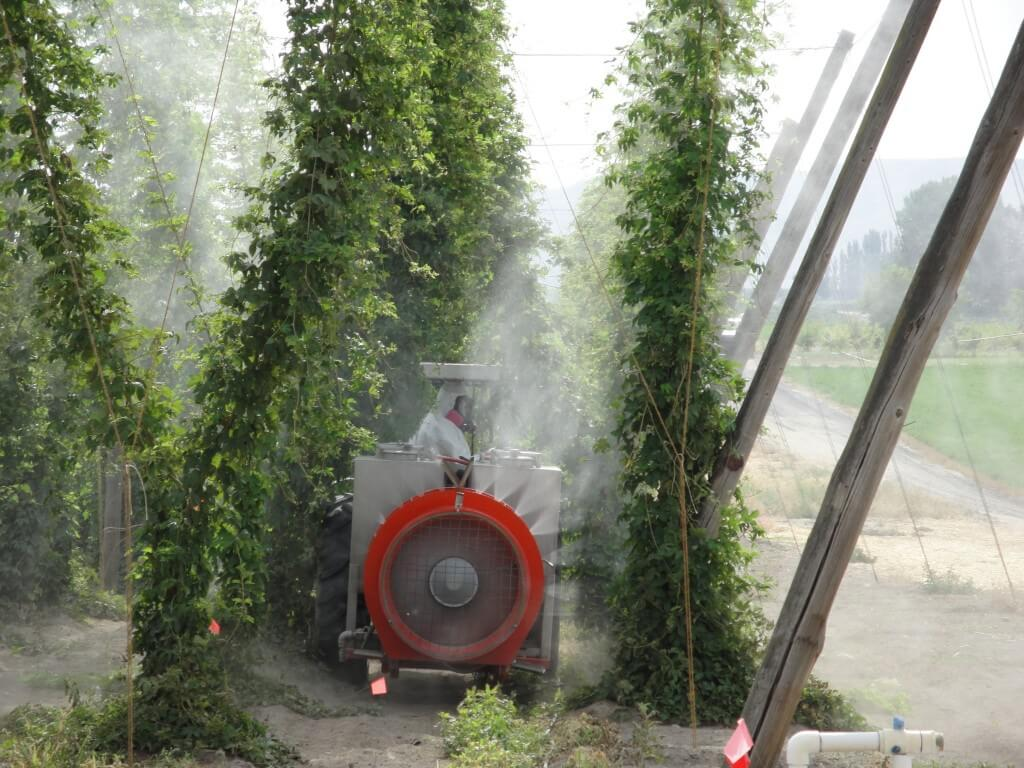 Rears airblast sprayer tackling 16-20 foot bines. Photo credit - D. Groenendale, Washington