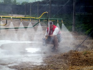 Timed output test. Prepare to get very wet. Sprayer must be clean and PPE is a must.