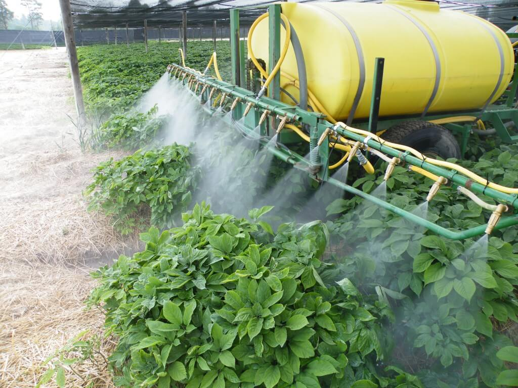 Custom-made ginseng sprayer. A standard design.